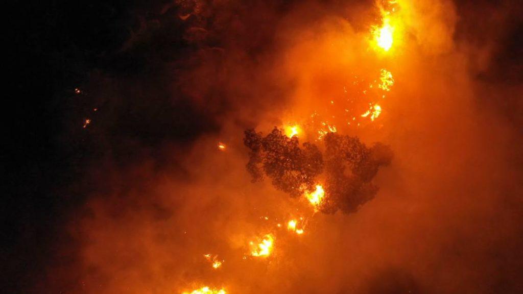 incendies de forêt liban syrie