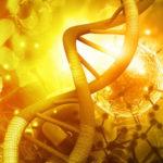 Vaccin ARN Virus Recombinant