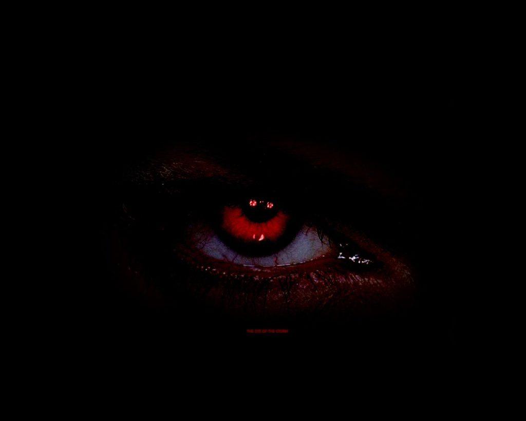 Dans l'Obscurité