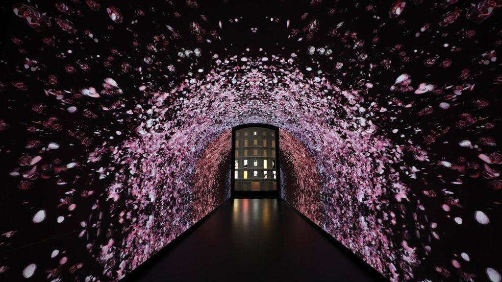 Miss Dior Exposition love'n roses Shanghai